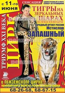 """Программа """"Тигры на зеркальных шарах на земле и в воздухе"""""""